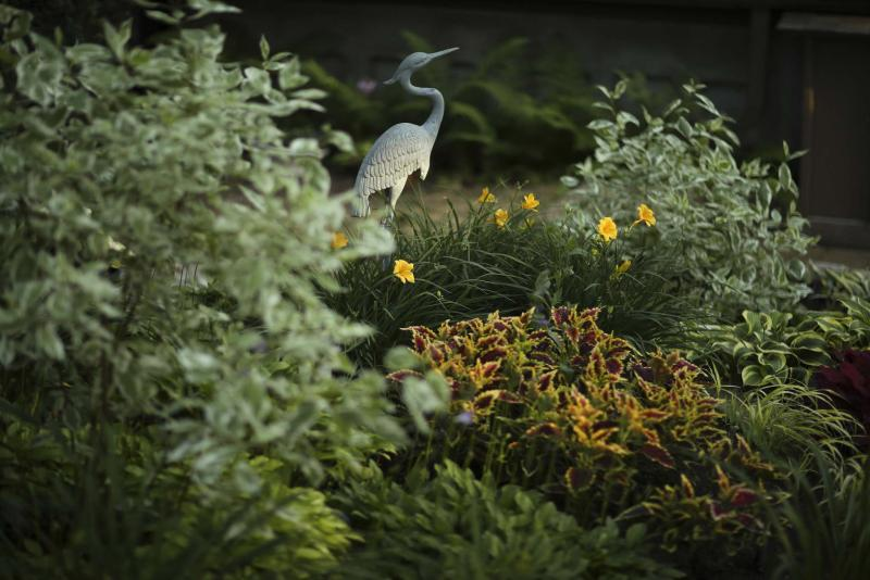<p>Jeff Wheeler / Minneapolis Star Tribune</p><p>A bed in the backyard garden of Eugene Waldowski's Ramsey, Minn. home. </p>