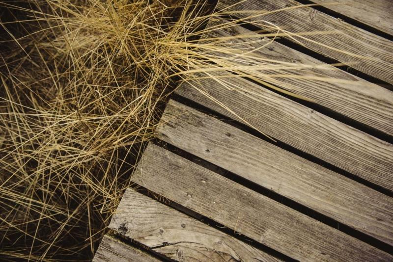 <p>The Washington Post files</p></p><p>In addition to suppressing weeds, wooden walkways prevent you from walking directly on soil, keeping it from becoming too compact. </p>