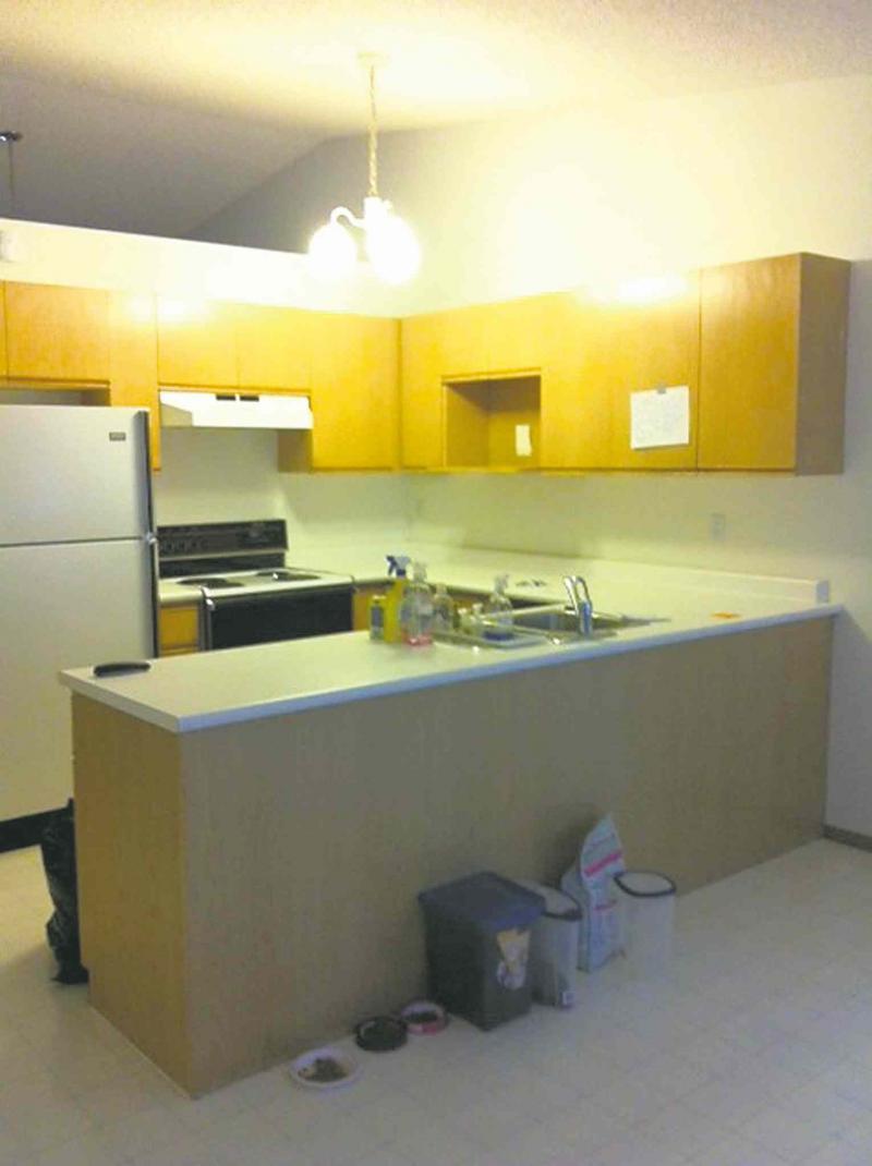 RENOVATIONS All The Modern Touches Winnipeg Free Press Homes - Kitchen design winnipeg