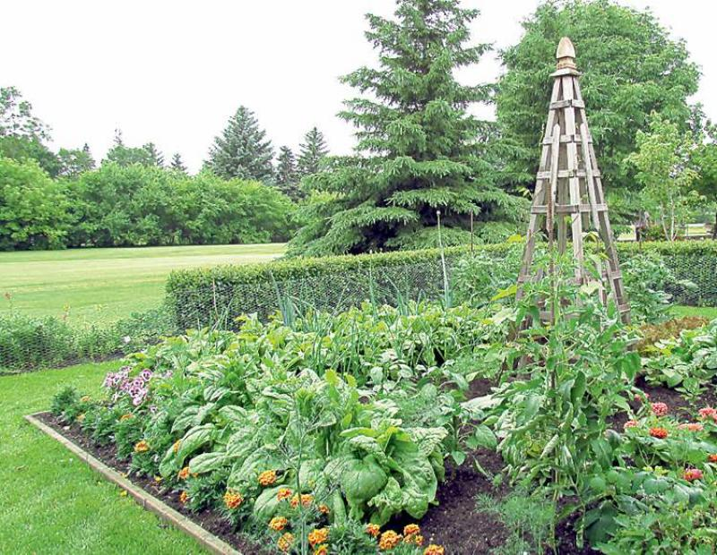 GARDENING Harvest a plenty Winnipeg Free Press Homes
