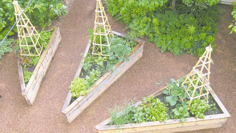 Gardening in elevated beds is easy and puts you in control for Garden designs for triangular gardens