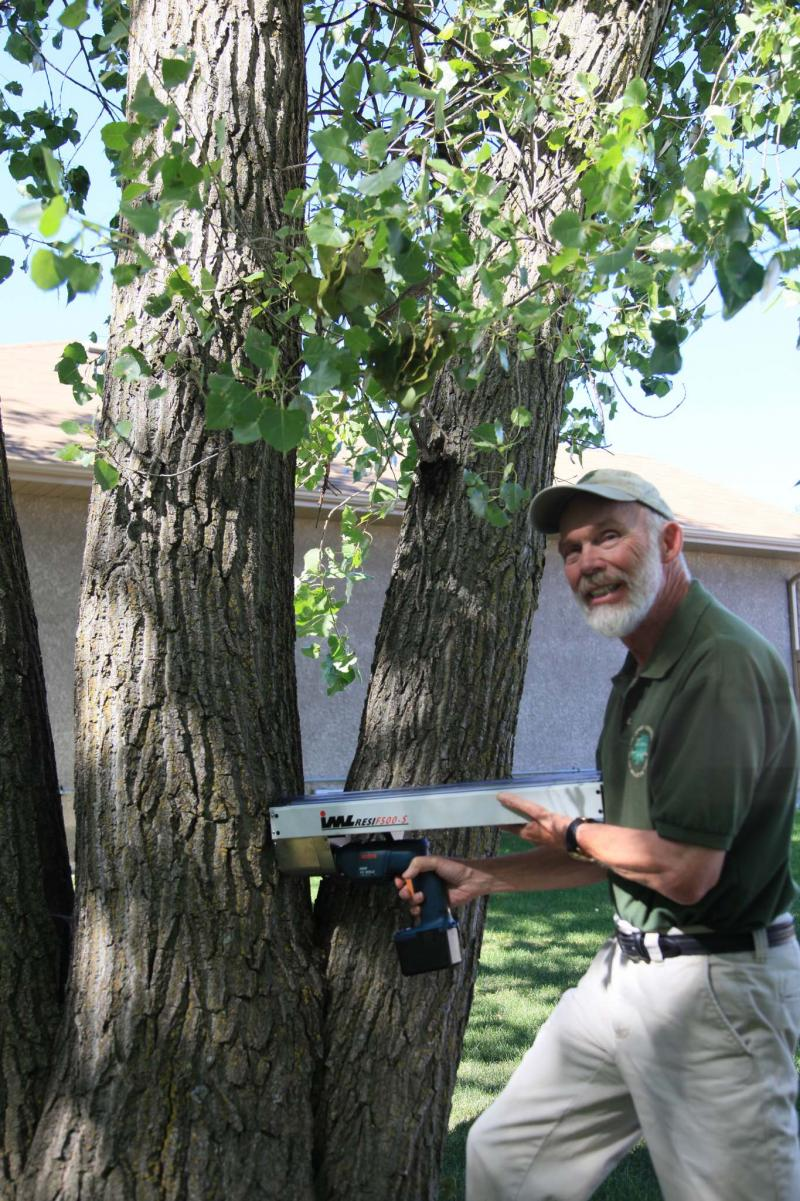 <p>Supplied</p><p>Michael Allen uses a resitograph to detect tree decay, which can help determine a tree's stability.</p>