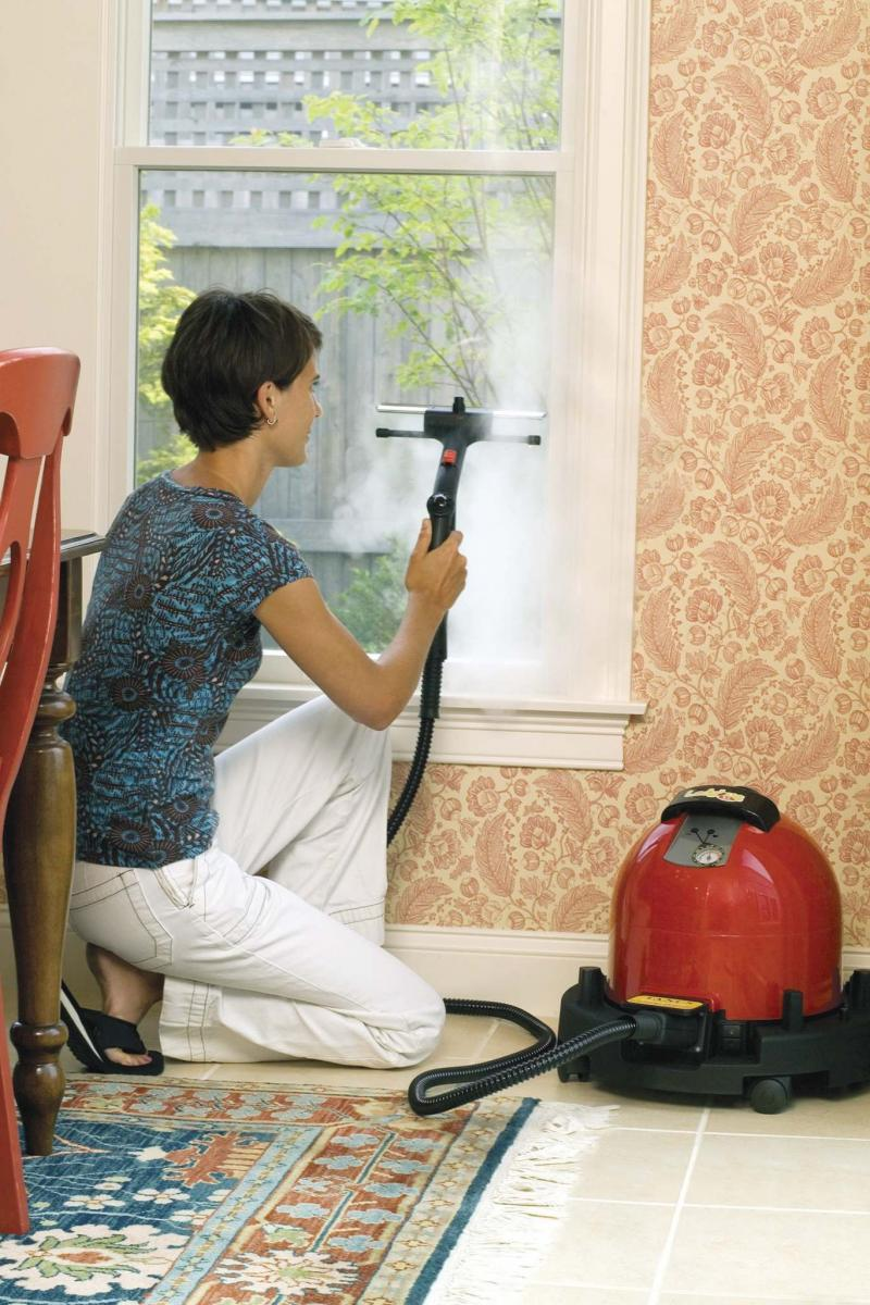 <p>Allergybuyersclub.com</p><p>Steam cleaning can save you from scrubbing or even throwing out household items.</p></p>