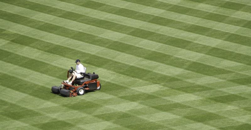 Professional lawn care winnipeg free press homes for Lawn care professionals