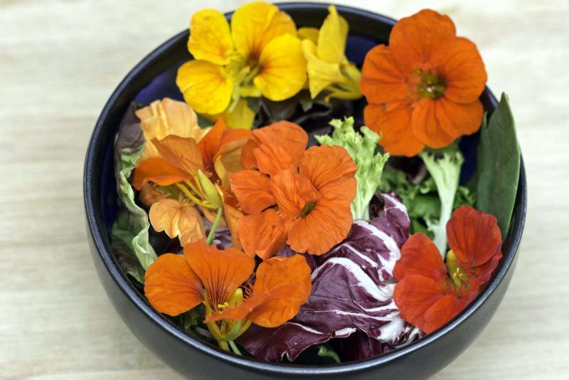 <p>West Coast Seeds</p><p>Mmmm... pretty, peppery nasturtium petals decorate this salad.</p>