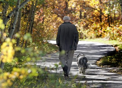 Perfect Day- Paul Buteux walks  his dog Cassie Tuesday on the Sagimay Trail in Assiniboine Forest enjoying a almost perfect  fall day in Winnipeg- Standup photo  September 27, 2011   (JOE BRYKSA / WINNIPEG FREE PRESS)