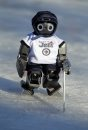 Robot hockey ...