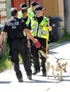 Police dogs ...