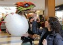 Meire Anne Thorarinson pets a dragon baby held by an actor Godefroy Ryckewaert, from Paris, France (plays the character Snotlout) at Polo Park Shopping centre. How To Train Your Dragon Live Spectacular at the MTS Centre this weekend and they were in the mall trying to drum up some interest in the show. November 23, 2012  BORIS MINKEVICH / WINNIPEG FREE PRESS