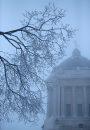 Hoar frost ...