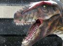 Tyrannosaurus ...