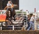 A cowboy gets ...