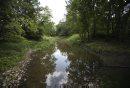 Normand Creek ...