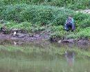 A fisherman ...