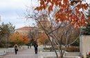 University of ...