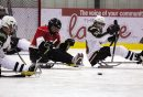 Canstar Community News The Manitoba Falcons' Stephanie Kardal (centre) chases afte a loose puck. (JORDAN THOMPSON)