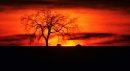 A prairie sun ...