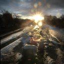 The sun rises ...
