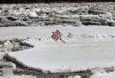 Heavy ice ...
