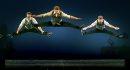 Flying members ...