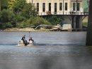 River patrols ...