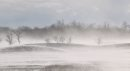 Blowing snow ...