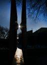 Winter Sun- ...
