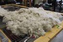 052 - Fleece ...