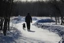 A woman walks her dog in Assiniboine Forest Tuesday morning.  Standup Tuesday,  March 03, 2015 Ruth Bonneville / Winnipeg Free Press.