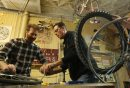 Bike mechanic ...