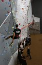 Wall climbers ...