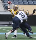 Winnipeg Blue Bombers QB Drew Willy at practice Wednesday at Investors Group Field- The Team is preparing for a home tilt against the Montreal Alouettes Friday -See Paul Wiecek Story - July 08, 2015   (JOE BRYKSA / WINNIPEG FREE PRESS)