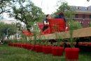 Cool Gardens:  ...