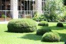 Garden art ...