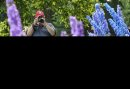 Dave Olinyk takes a photo during a stroll through the English Garden at Assiniboine Park Sunday. 150719 July 19, 2015 MIKE DEAL / WINNIPEG FREE PRESS