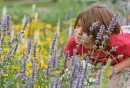 Gwyn Lewis, 6, watches the bees buzz about while at the 9th Annual Monarch Butterfly Festival at the Living Prairie Museum.  150719 July 19, 2015 MIKE DEAL / WINNIPEG FREE PRESS