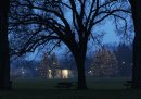 Misty Morning- The duck pond shelters trees illuminated by Christmas lights on a misty Tuesday morning in Assiniboine Park- Standup Photo–Nov 17, 2015   (JOE BRYKSA / WINNIPEG FREE PRESS)