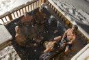 hot tub - ...