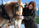 JOE.BRYKSA@FREEPRESS.MB.CA Local- Standup photo- Stefanie  Hawker meets the Belgium horses from Beaudoin Carriage Service at the West Broadway Snowball Winter Carnival held Saturday afternoon at the Broadway Neighborhood Center- Winnipegers were out in full force enjoying the unseasonably high temperatures- Jan 16, 2010 Stefanie  Hawker JOE BRYKSA/WINNIPEG FREE PRESS