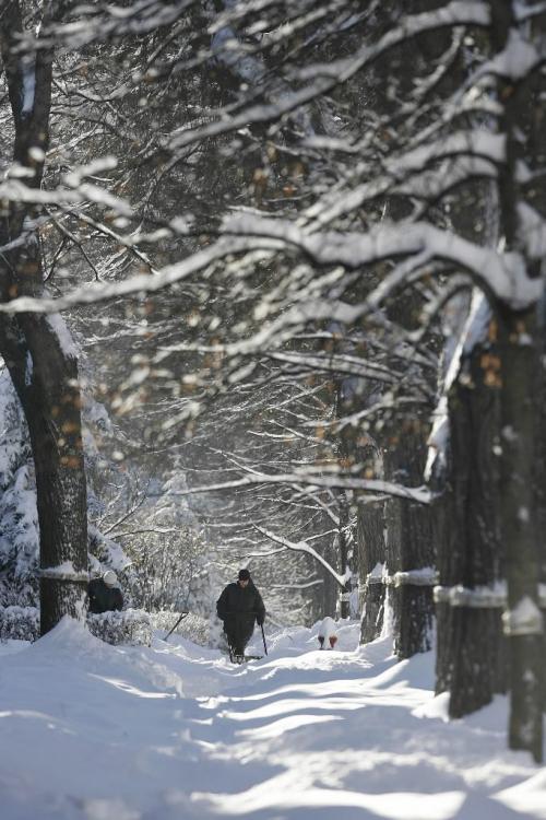 John Woods / Winnipeg Free Press / December 31, 2006 - 061231 - Winnipeggers woke up to 27cm of snow Saturday December 31/06.   A man shovels in Wolseley area