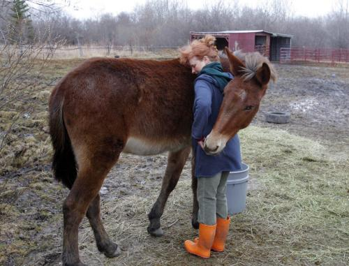 Molly gives Karin a hug in his own special way. WHO: Karin Schlaikjar, originally from Denmark. WHY: Karin is just one of those unforgettable characters, so personable, rescues wildlife. Should shoot her and her Molly the Mule, very affectionate mule she gave a home to in her backyard. March 29, 2012  BORIS MINKEVICH / WINNIPEG FREE PRESS