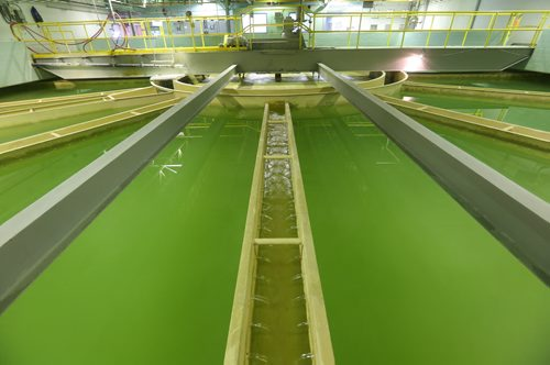 Brandon Sun Water Treatment Plant for Day in Brandon feature. (Bruce Bumstead/Brandon Sun)