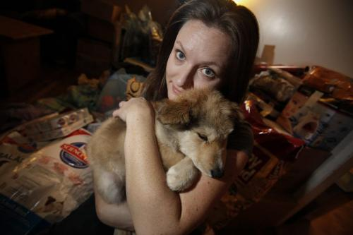 With donated items in the background Jill Britton, of Hull's Haven Border Collie Rescue, cuddles with 4 month old husky cross Leo who she just picked up from a flight from Norway House Sunday, November 25, 2012. (John Woods/Winnipeg Free Press)