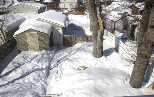 Homes.Resale. The house is at  278 Berry Street in St. James. View from the second floorof the backyard. The realtor is Shona Scappaticci.  Todd Lewys story (WAYNE GLOWACKI/WINNIPEG FREE PRESS) Winnipeg Free Press March 21 2013
