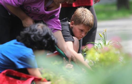 Grade 5 & 6 students from  Niji Mahkwa elementary school participate in North End renewal project  by planting flowers and in front of their school located in the inner city Thursday afternoon. Grade 5 student Ethan Pierra plants day lilies in garden in front of school.  Photography by Celine Bonneville Winnipeg Free Press June  20, 2013