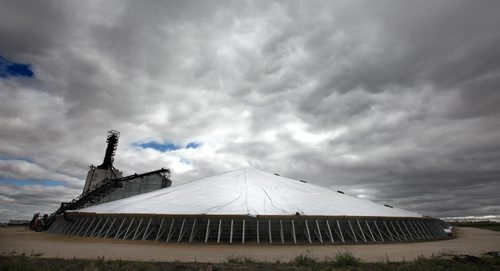 A million and a half bushels of WInter Wheat lies stored under a temporary tarp at the Patterson Inland Grain Terminal Friday on the NW outskirts of WInnipeg. See Larry Kusch story. September 20, 2013 - (Phil Hossack / Winnipeg Free Press)