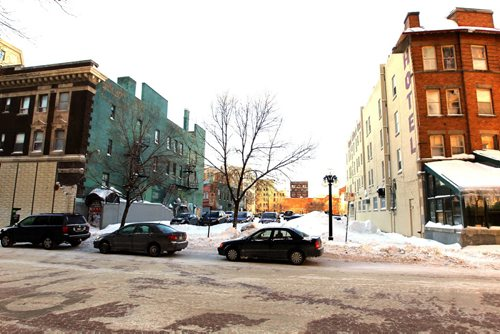 Albert Street Business block btw Royal Albert and St. Charles. BORIS MINKEVICH / WINNIPEG FREE PRESS January 7, 2014