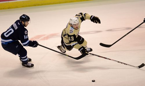 5/29/2014 - Wilkes-Barre/Scranton Penguins' Conor Sheary lunges for the puck, Thursday, during the playoff game against the St. John's IceCaps. Photo Andrew Krech  cv30PensCapsp2