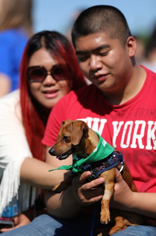 Mariah Malveda and Justin Ison, with their dog, Charlie, at the Paws in Motion event at Assiniboine Park, Sunday, June 22, 2014. (TREVOR HAGAN/WINNIPEG FREE PRESS)