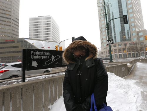 Sheryl Maxwell at a blustery Portage and Main Thursday afternoon heads to the pedestrian underpass to cross Main Street Randy Turner weather story Wayne Glowacki / Winnipeg Free Press Nov. 19   2015
